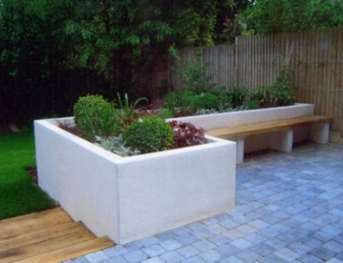 A Modern English Garden in Highgate